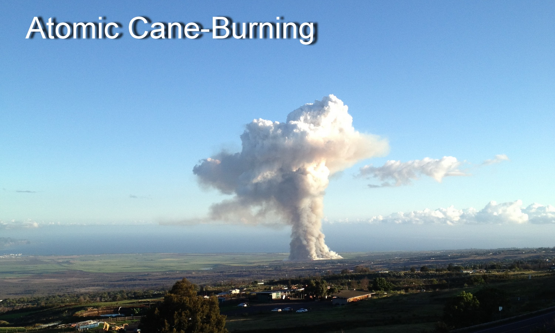 cane-burn