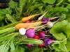 veggies-from-martha
