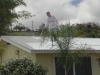 roof1-jpg